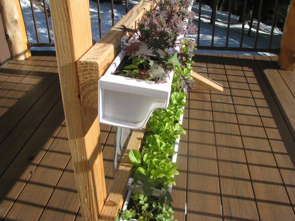 Vertical Gutter Gardens Peak Prosperity